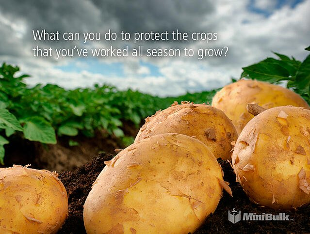 protect the crops you've worked to grow