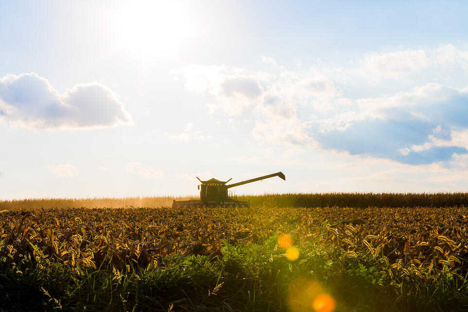 Harvesting agriculture products to be prepared for bulk transport