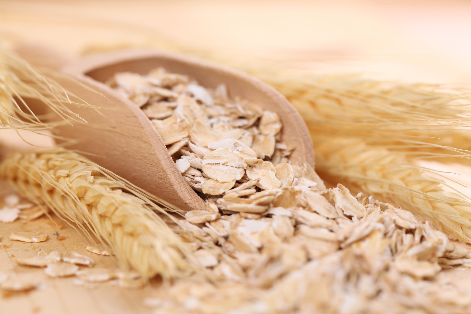 Canadian_Oats_Close_Up
