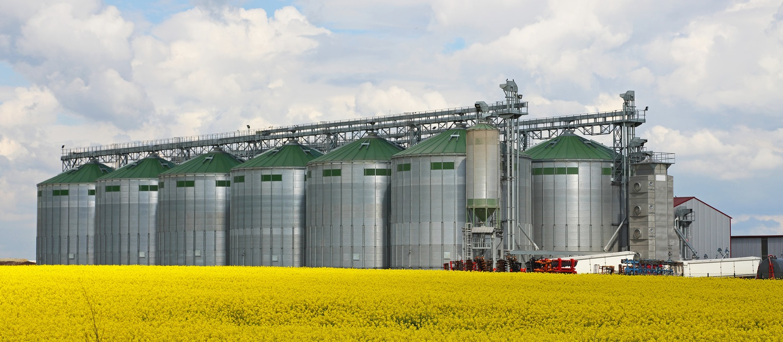 Canadian_Canola_Process_Facility