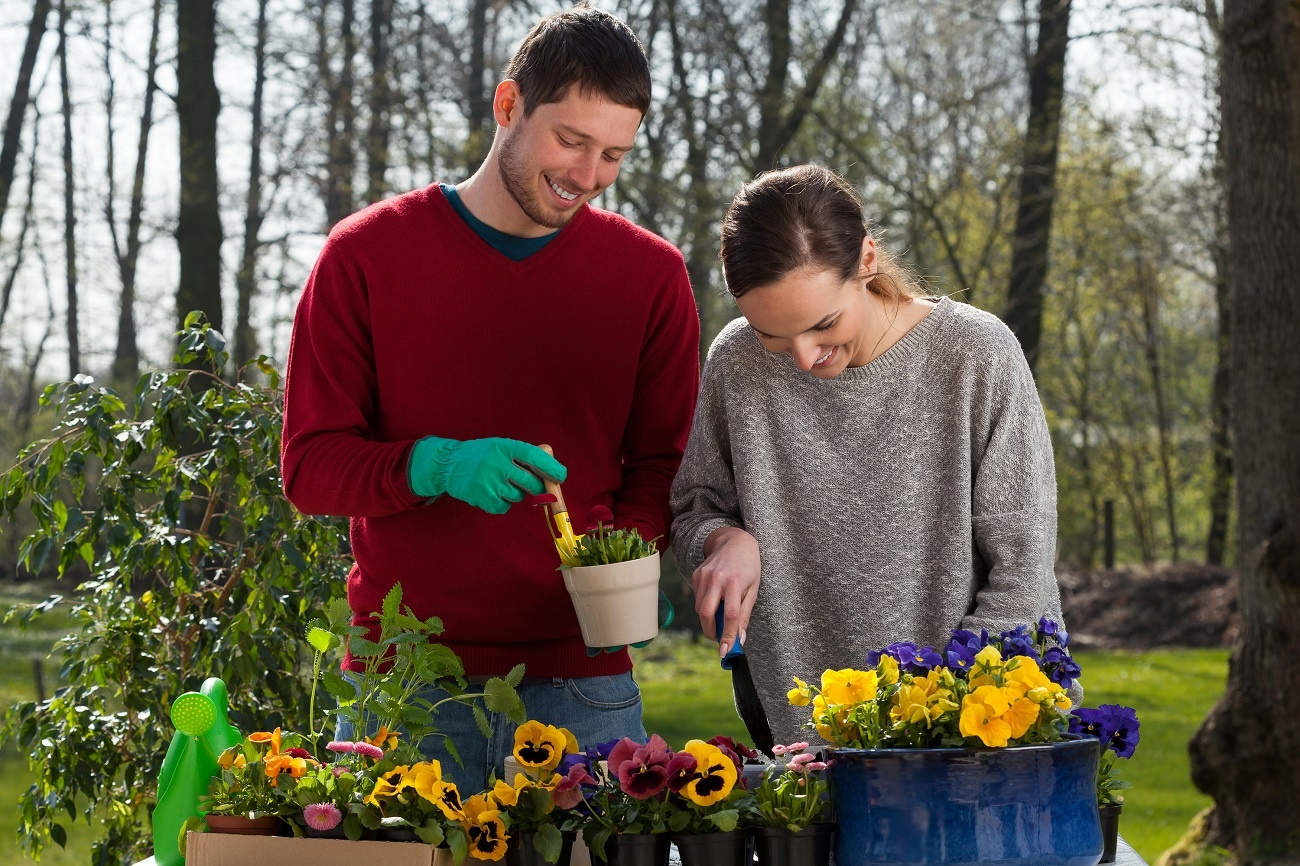 A young couple work together in their garden planting flowers.