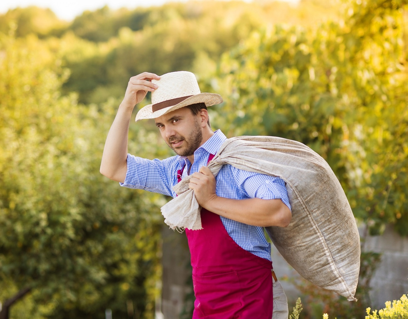A farmer tips his hat as he walks home with a sack of grain.