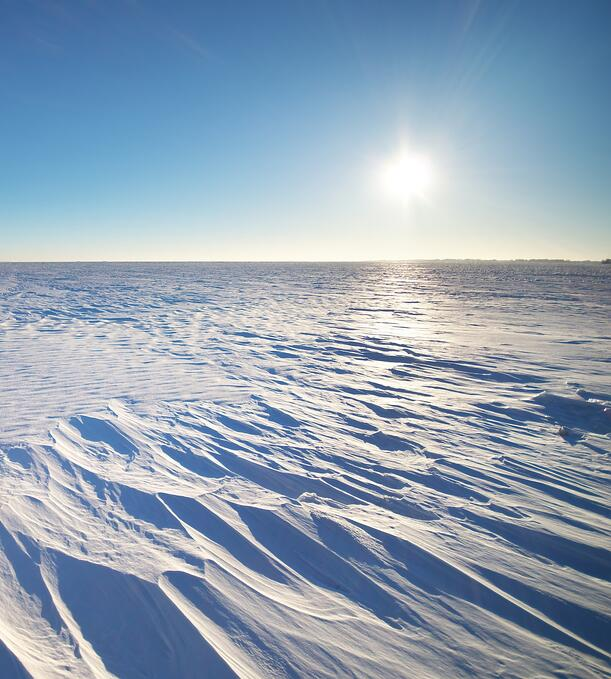 A cold and barren winter landscape on the prairies